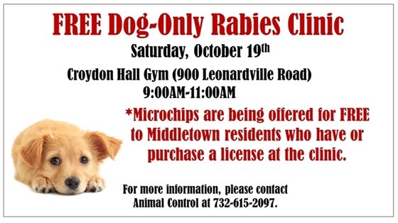 Dog Only Rabies Clinic