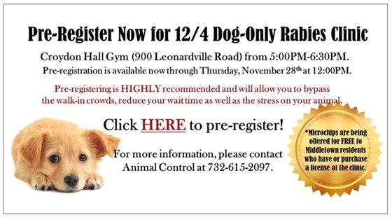 Dog Rabies Clinic