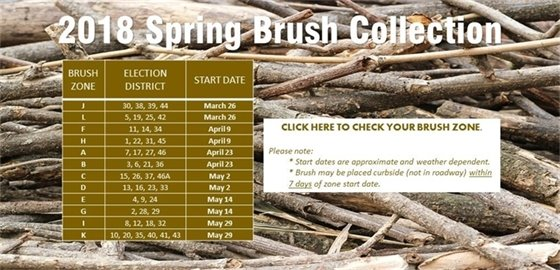 Brush and Leaf Collection 2018
