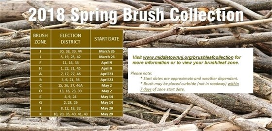 2018 Spring Brush Collection