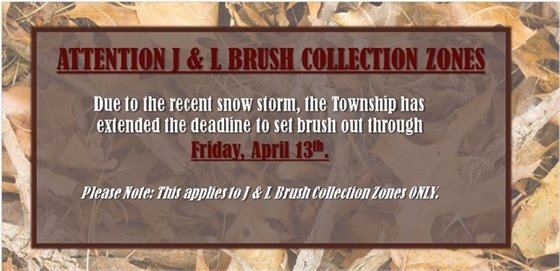 J & L Brush Collection