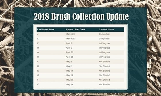 Brush Collection Update