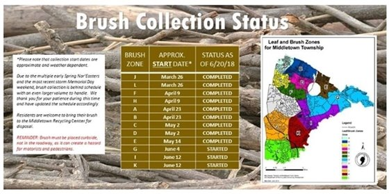Brush Collection Status