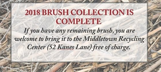 Brush Collection Complete