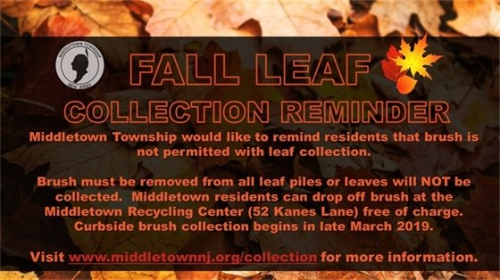 Fall Leaf Collection Reminder- No Brush