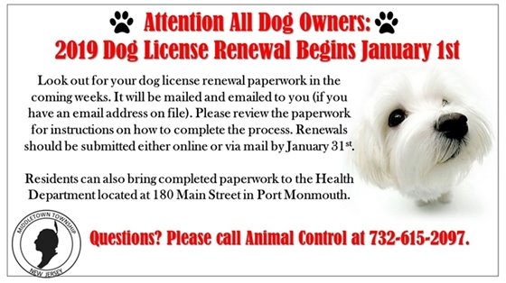 2019 Dog License Renewal