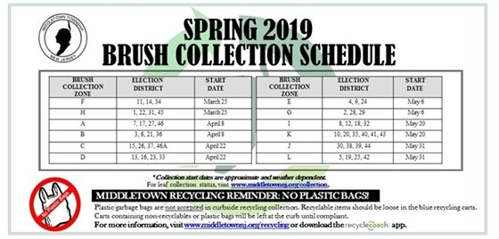 2019 Spring Brush Collection