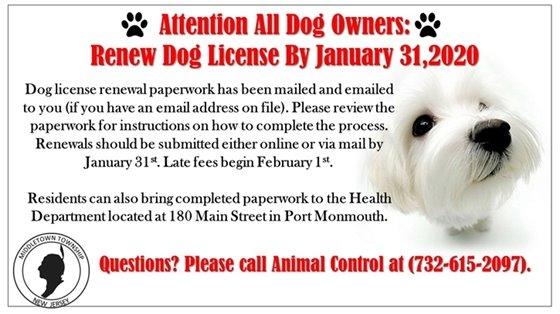 Dog License 2020
