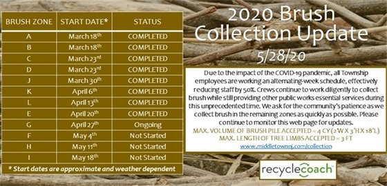 2020 Brush Collection Update