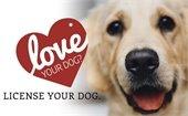 Renew Dog License