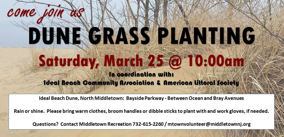Dune Planting March 25