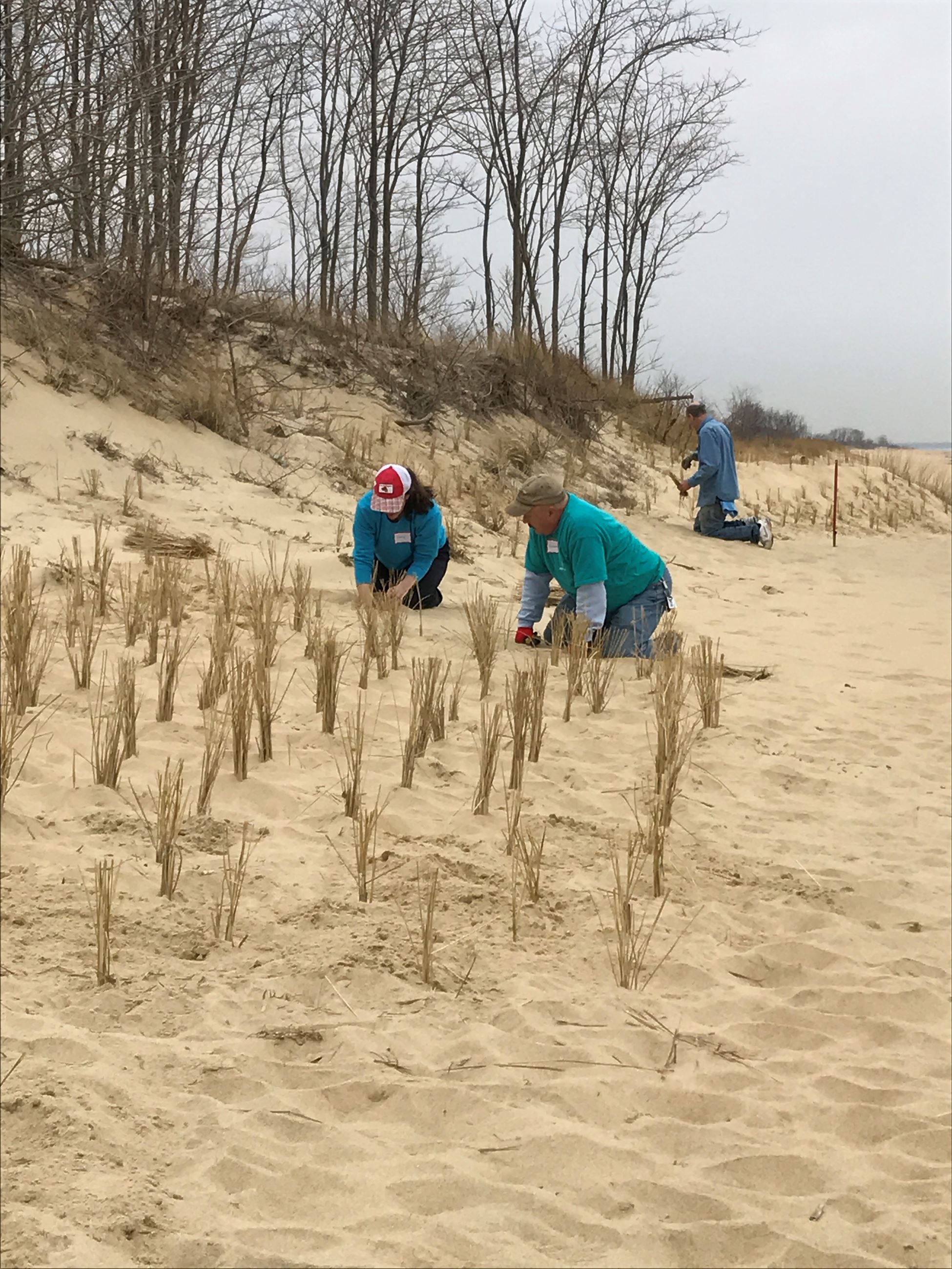 Archived Ideal Beach Improvements Underway