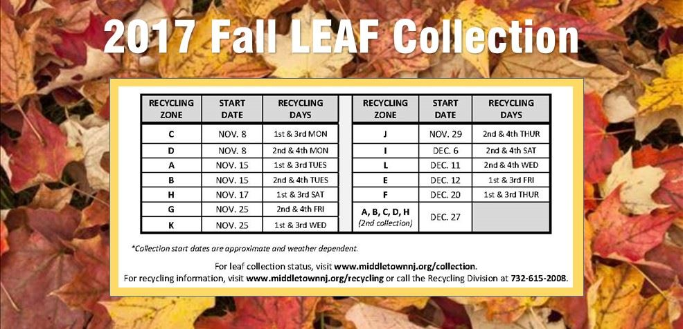 2017 - leaf collection