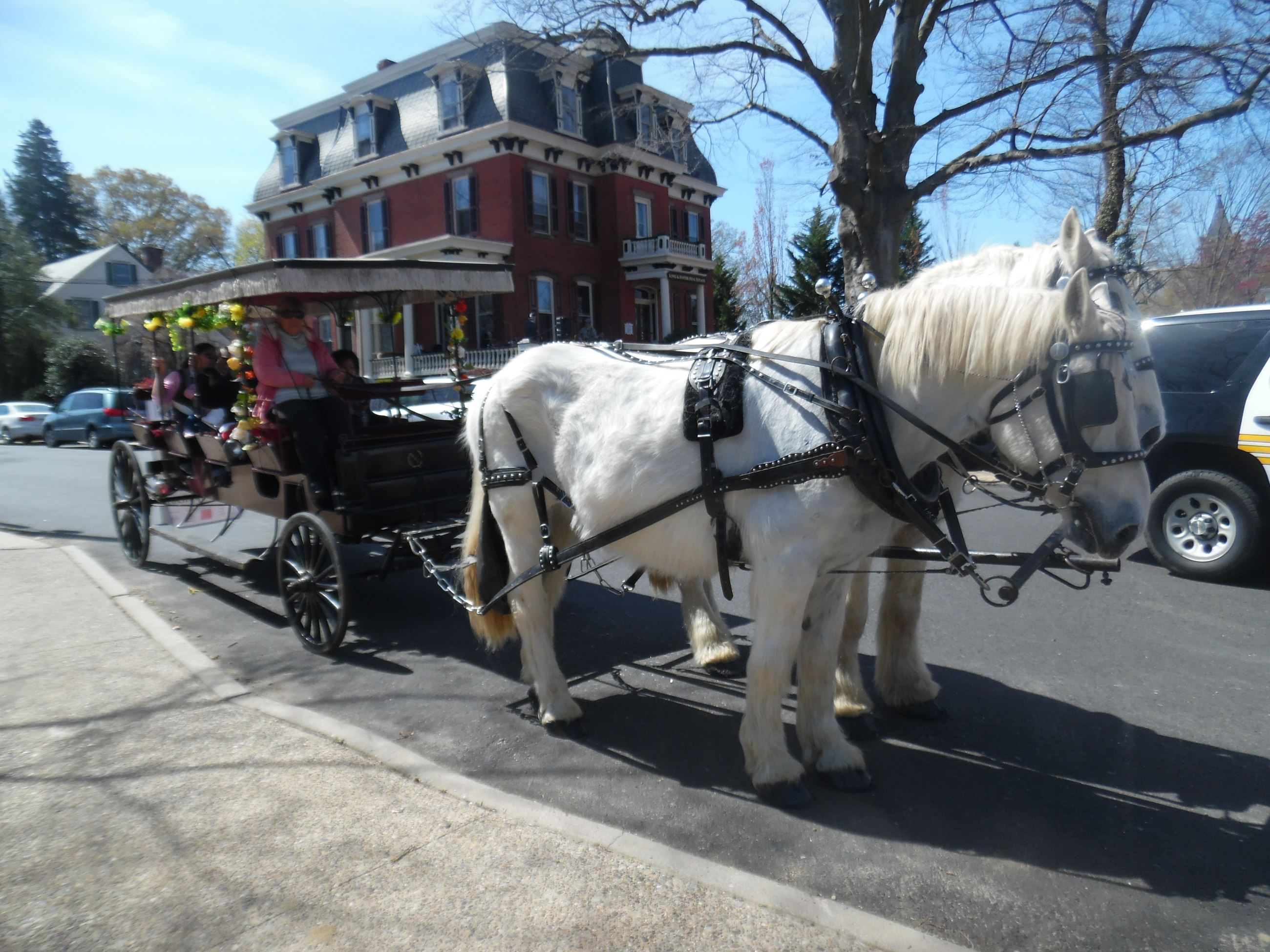 Middletown Horse-Drawn Carriage Ride on 10/13/17