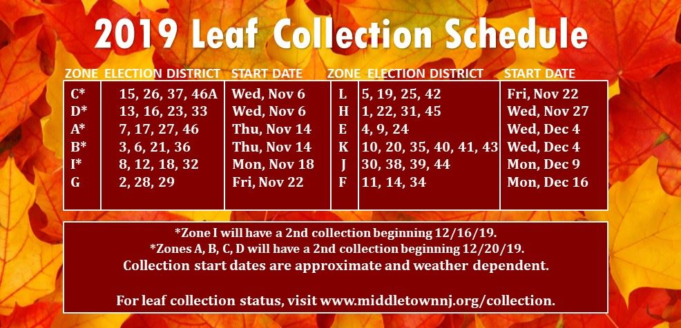 2019 Leaf Collection