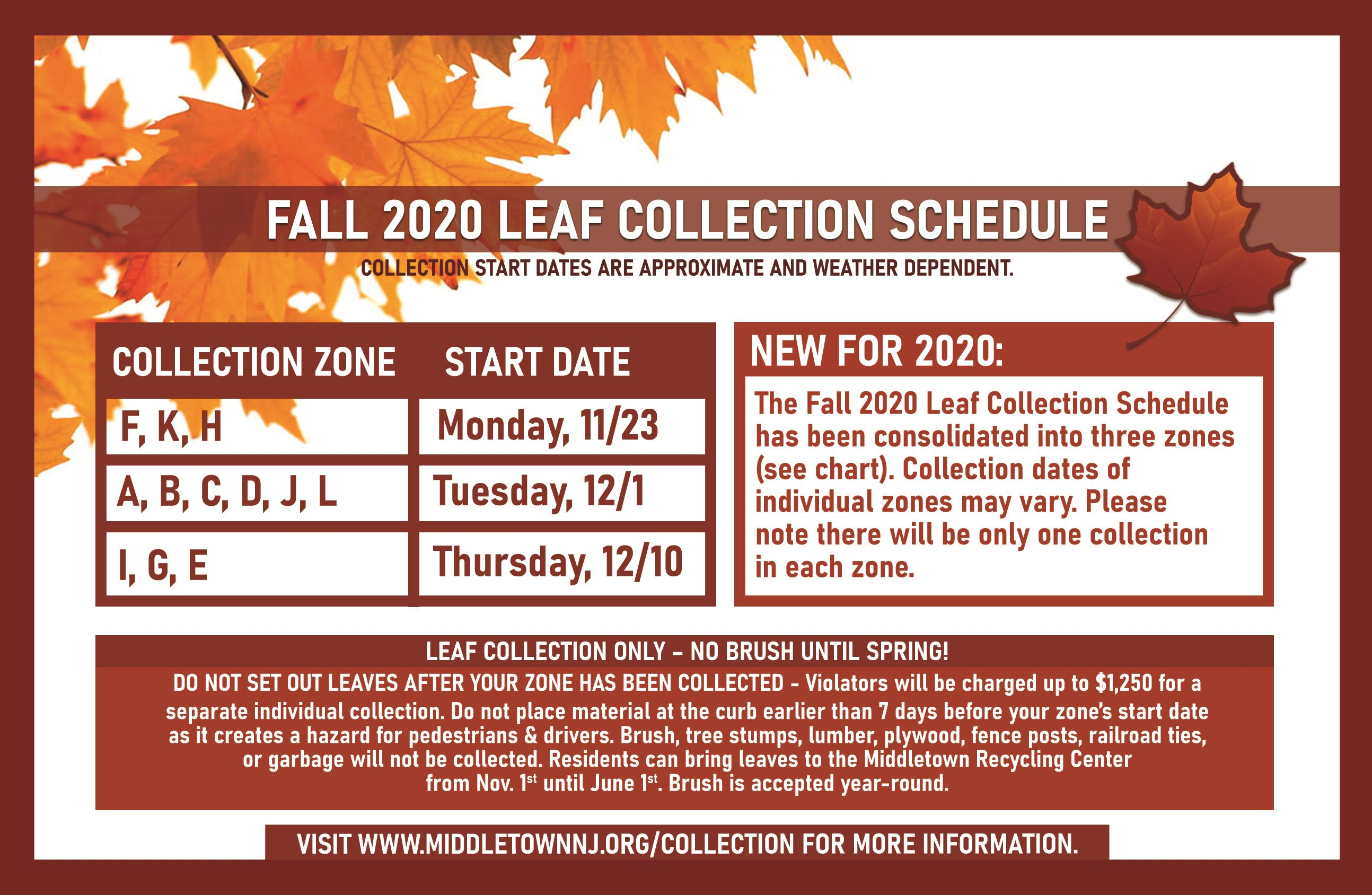 FALL 2020 LEAF COLLECTION POSTCARD_web